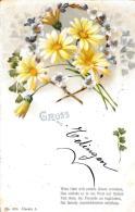 [DC10831] CPA - FIORI - GRUSS AUS - Viaggiata 1900 - Old Postcard - Blumen