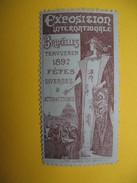 Vignette  Exposition Internationale  Bruxelles  Tervueren 1897  Fêtes Diverses & Attractions - Cinderellas