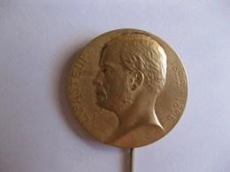 Médaille / Broche, Pasteur 1822 – 1895 , Par PRUD'HOMME - Non Classés
