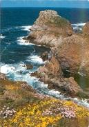 CPSM Cleden-Cap Sizun-La Pointe Du Van-Le Rocher De Morgane   L2373 - Cléden-Cap-Sizun