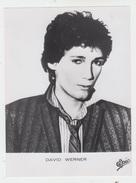 PHOTO PRESSE 18X24 / DAVID WERNER - ROCK AMERICAIN 1980 - Célébrités