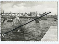 CPM  - Ile De Sein - (Finistère ) - Quai Des Paimpolais - Ile De Sein