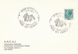 1977 VERONA HORSE FAIR EVENT COVER  Italy Card Horses - Horses