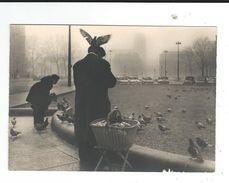 CPM PARIS  Les Pigeons Place Hotel De Ville Au Fond  Notre Dame Photo Jean Arty 79 Neuve TBE - Francia
