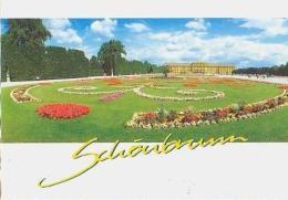 Wien   H405            Schönbrunn Blumenparterre - Château De Schönbrunn