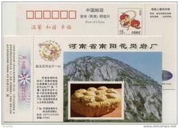 China 1996 Nanyang Granite Work Advertising Postal Stationery Card Cretaceous Dinosaur Egg Fossil - Fossili