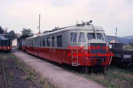 Reproduction D'une Photographie D'un Train CFD N°222 Tence-Dunières à Vivarais-Velay En 1975 - Reproductions