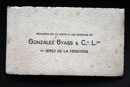 Carnet De 12 Cartes Détachables De Bodega De Gonzales Byass à Cadiz Avec Le Plan De Vignoble - Cádiz