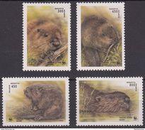 Belarus WWF MNH Set 1995 Scott 117-120 - Unused Stamps