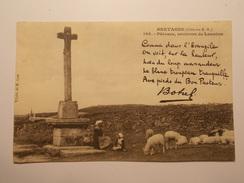 Carte Postale -Pâtoure,  Environs De LANNION (22) - BOTEREL (1670/1000) - Lamballe