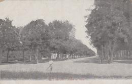 Métiers - Botanique Horticulture - Jardinier - Allées Du Parc De Dijon - Métiers