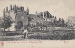 Métiers - Botanique Horticulture - Jardinier - Asile D'Attrée Près D'Auxanne Dijon - Château Louis XIV - 1905 - Métiers