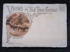 Dépliant Touristique De Santa Cruz California Californie - Views Of Big Tree Grove USA - Dépliants Touristiques