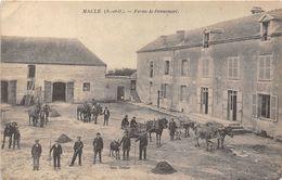 78-MAULE- FERME DE PENNEMORT - Maule