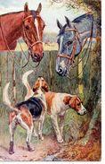 Animaux : Chiens Et Chevaux - Hunde