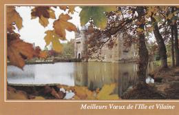 56. PLOERMEL (ENVIRONS).  LE CHATEAU DE TRECESSON.  CARTE DE VŒUX. ANNÉE 1989. - Partecipazioni
