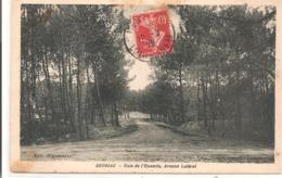 44 - QUIMIAC - Baie De L'Enseria, Avenue Latéral. - Other Municipalities