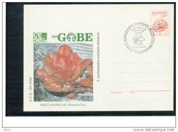 Slowenien / Slovenia 1994 Pilze Ganzsache Brief / Mushrooms Postal Stationery Letter - Pilze