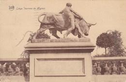 Liège, Taureau De Mignon (pk39495) - Liege