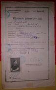 Passeport LITHUANIE 1920 LITHUANIA Passport - Reisepaß - Revenues - Historische Documenten