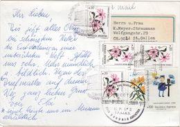 FLOR-L142 - ARGENTINE Belle Carte Postale De USHUAIA Pour Saint-Gall Affr. Fleurs - Argentinien