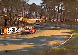"""72-LE MANS- CIRCUIT DES 24 HEURES DU MANS , DANS LES """"S"""" DU TERTRE ROUGE - Le Mans"""