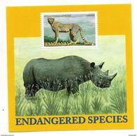 2001 Tanzania Rare Animals Rhino Crocodile Leopard Wild Dogs  Complete Set Of 4 + Souvenir Sheet MNH - Tanzanie (1964-...)