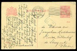 Nederland Briefkaart 1920 G 103 Van Den Haag Naar De Steeg - Ganzsachen