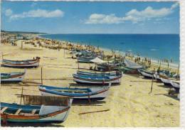QUARTEIRA - Algarve; Barcos De Pesca E Ao Fundo,  1968 - Faro