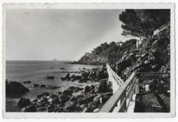 Cpsm Bon Etat , 9x14cm ,  La Seyne Sur Mer , (environs Toulon) , Mar-vivo, Carte Rare , Les 2 Frères Au Loin - Saint-Mandrier-sur-Mer