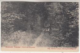 Momignies - Belgique - Percé Des Hayettes - Imp. Gerday-Lemye, Momignies - Momignies