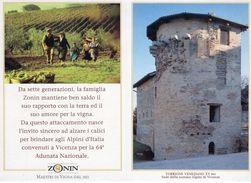 Vicenza  1991 - 64^ Adunata Nazionale Alpini - Pubblicitaria - - Patriotiques