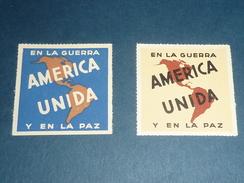 ETIQUETTES AVIATION LOT DE 2 VIGNETTES - EN LA GUERRA AMERICA UNIDA Y EN LA PAZ - AIR MAIL ...(X) - Étiquettes à Bagages