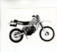 PHOTO MOTO HONDA XR 250 R - Motor Bikes