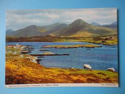Irlanda - Galwey - Kylemore From Letterfrack - Connemara - Veduta - Galway