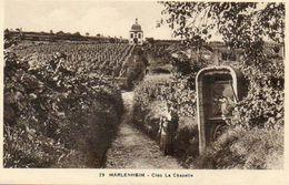 CPA - MARLENHEIM (67) - Aspect Des Vignes Du Clos La Chapelle Dans Les Années 30 - Other Municipalities