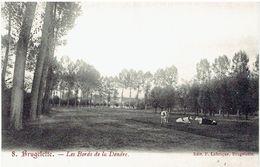 BRUGELETTE - Le Bords De La Dendre - Edit. F. Labrique - Brugelette