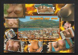 Argelès Sur Mer A Quel Sein Se Vouer ? Carte Postale Pin Up Femme Seins Nus - Naturisme Nudisme - Pin-Ups