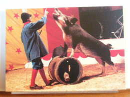 ALENZIMRA ET SES SANGLIERS - CIRQUE METROPOLE 1989 - 300 EX. - ETAT NEUF - Cirque