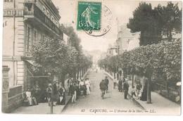 CPA 14 / CABOURG  /  AVENUE DE LA MER , Très Animée/ - Cabourg