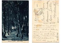 CPA Soriano Nel Cimino, Giardino Pubblico . ITALY (545175) - Italia