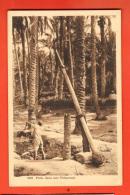 NEN-26  Puits Dans Une Palmeraie. .. Circulé Sous Enveloppe  En 1947 - Missie