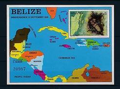 [47333] Belize 1982 Marine Life Lobster Independence MNH Sheet - Marine Life