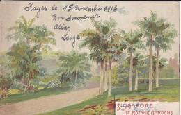 ASIE---RARE---SINGAPORE---the Botanic Gardens---voir 2 Scans - Singapour