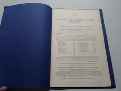 PROPOSED SWAN HILL IRRIGATION And WATER SUPPLY TRUST -  VICTORIA / 1887 ( TYNTYNDER / Tatchera ) Copie MAP / USA ! - Obras Públicas