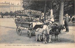 Lyon 2 Voiture Aux Chèvres Attelage Place Bellecour Pub Pétrole Hahn Coiffure - Otros