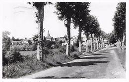 SAINT-MARTIN-d'ESTREAUX - ( 42 ) - Avenue De La Croix-Rouge    ( C.P.S.M. - Pt -Ft ) - Unclassified