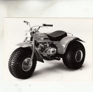 PHOTO MOTO HONDA ATC 110 - Motor Bikes