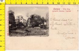 CARTOLINA - TORTONA ALESSANDRIA_VILLA OVO - Alessandria
