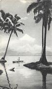 Dans Le Sillage De Bougainville V - Tonga - L'Ile Des Amis, Pirogue - Publicité Laboratoires La Biomarine - Océanie